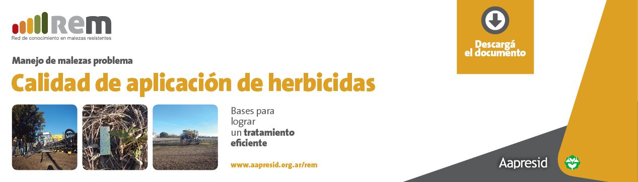 AAP-Banner-Calidad-de-aplicacion-web